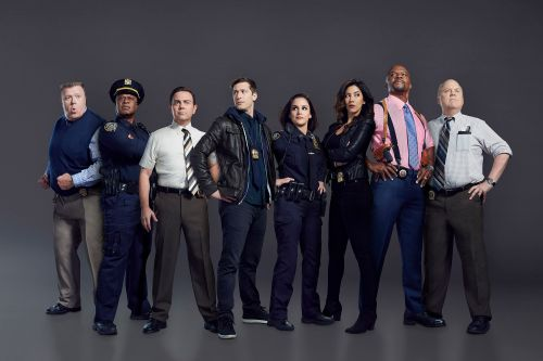 'Brooklyn Nine-Nine' and other cop shows slammed as 'propaganda' amid protests