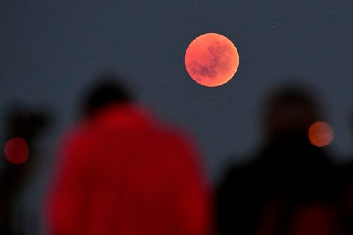 How to Stream the Super Blood Wolf Moon Lunar Eclipse This Weekend