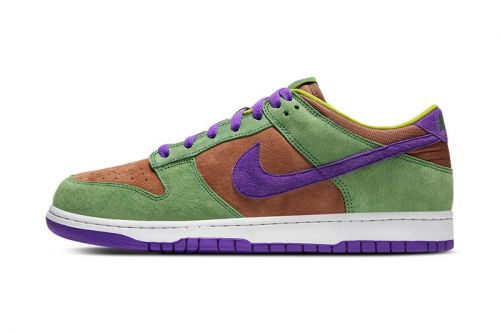 "Official Images of the Nike Dunk Low ""Veneer"""