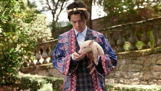 Just Wondering, Is Gucci Trying to Kill Us With This New Harry Styles Campaign?