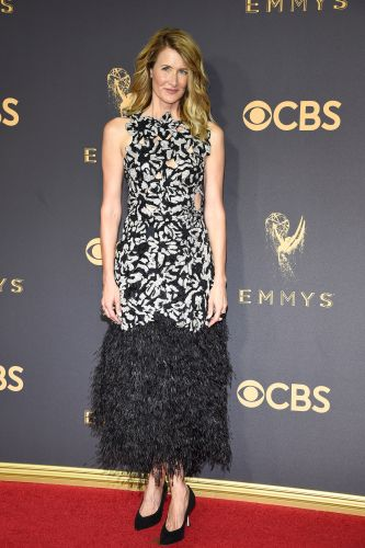 2017 Emmys Red Carpet: See All the Looks!