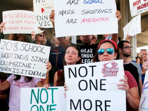 After A Call To Action From Student Emma Gonzalez, Florida Activists Take On Gun Laws