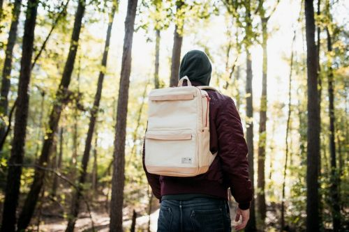 """Epitome x HEX """"Natural State"""" Collection Includes Sneaker Backpack and iPhone Wallet"""