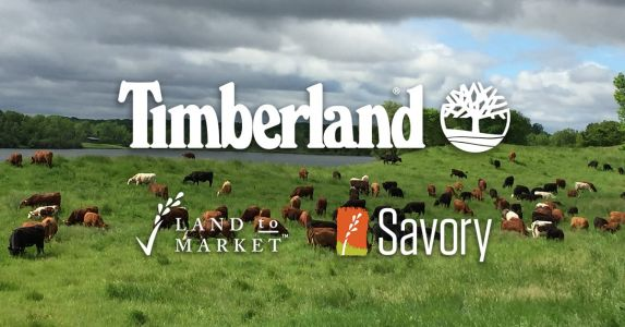 Timberland Is Investing Further in Regenerative Agriculture