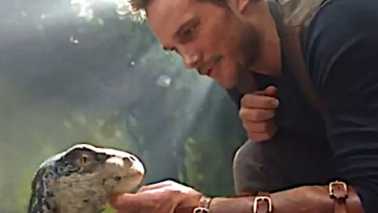Chris Pratt Petting A Baby Dinosaur Is Too Cute For Words