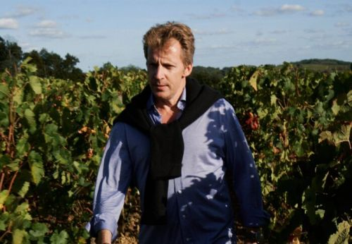 How SGC Wines Struck Gold Beneath the Grapes in Bordeaux