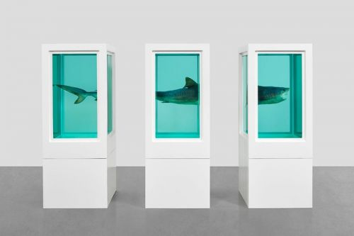 "Damien Hirst's ""Visual Candy and Natural History"" Exhibition Opens in Hong Kong"