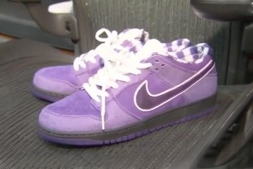 "Kyrie Irving Shows Off his CNCPTS x Nike SB Dunk Low ""Purple Lobster"""