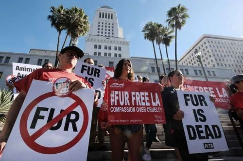 Los Angeles is banning the sale and manufacturing of fur