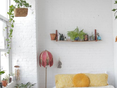 I Live In Brooklyn With My S.O. & 52 Plants - My Studio Apartment Costs $3000