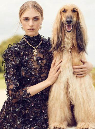 Uk harpers bazaar 12/17: hedvig palm